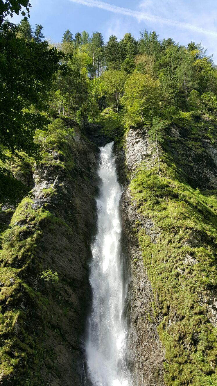 Das Wasser- Der Ursprung allen Seins